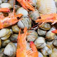 日月昇渔家菜